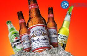 công bố bia nhập khẩu