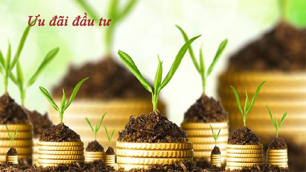 những điểm mới của luật đầu tư 2020